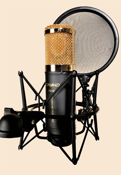RM 6m - Large Diaphragm Condenser Microphone